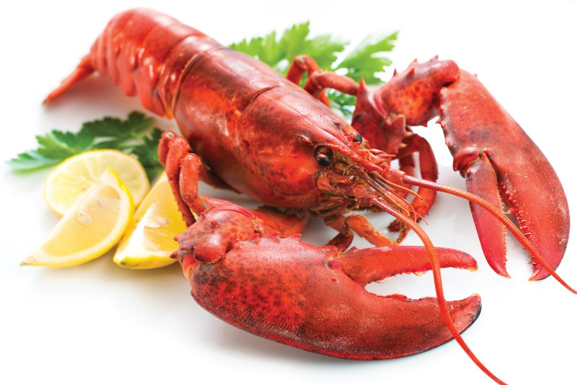 Health benefits and nutrition in seafood
